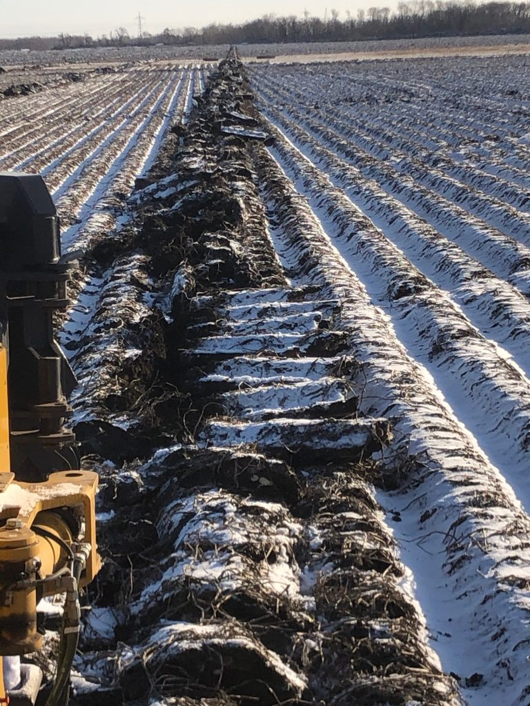 Manitoba contractors install tile on frozen potato fields